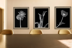 Room with floral Xray art